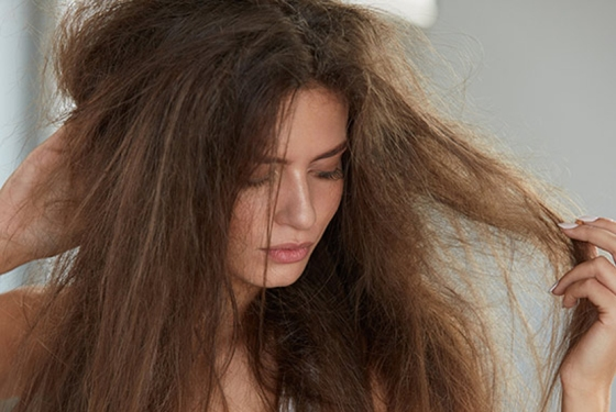 Shampo untuk rambut kering yang bagus